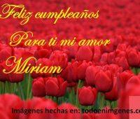 Imágenes de Feliz Cumpleaños mi amor Miriam