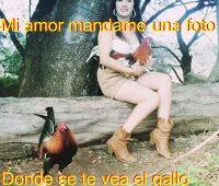 Imágenes mi amor mandame una foto donde se te vea el gallo