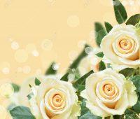 Tarjetas con flores para editar