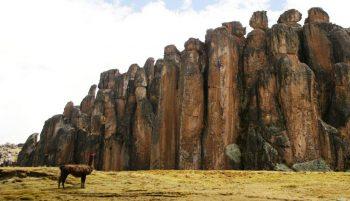 Bosque de piedras