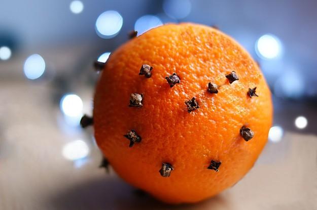 12 remedios naturales para combatir las moscas
