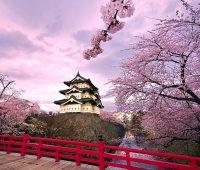 Imágenes de paisajes de japón con cerezos