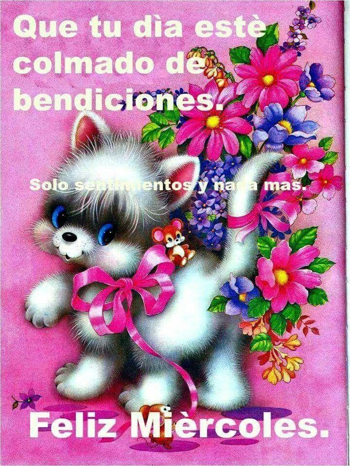 Imagenes De Buenos Días Feliz Miércoles Descargar Imágenes Gratis