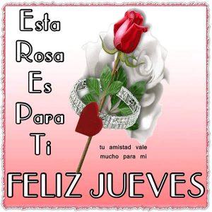 Rosa roja con anillo y frases de feliz jueves