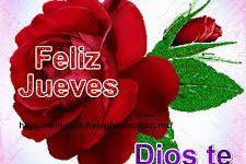 Rosa roja con frases Dios te bendiga