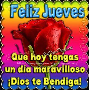 Rosa roja con frases amarillas de feliz jueves Dios te bendiga
