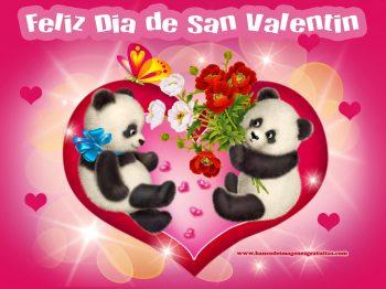 Osos panda enamorados con rosas