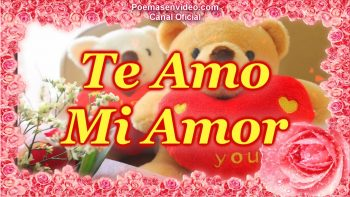 Rosas con frases te amo